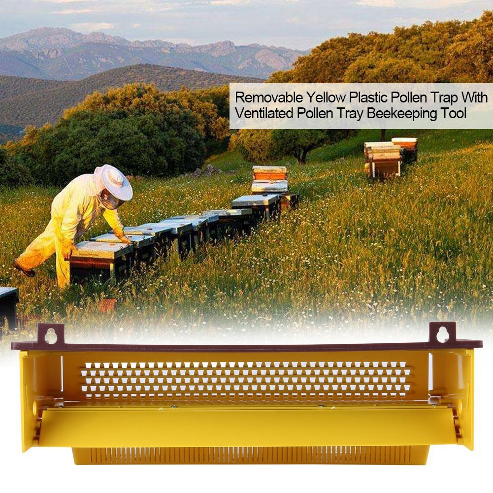 Beekeeping Plastic Pollen Trap Yellow with Removable Ventilated Pollen Tray Pollen Collector Supplies Tools, 39 x 14 x 10cmBeekeeping Plastic Pollen Trap Yellow with Removable Ventilated Pollen Tray Pollen Collector Supplies Tools, 39 x 14 x 10cm