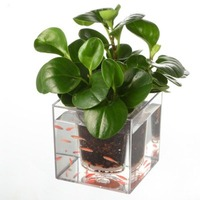 Automatic Drip Irrigation Flower Pot Resin Plastic Flowerpot Aquarium Fish Pot Plants Fleshy Personality Creative