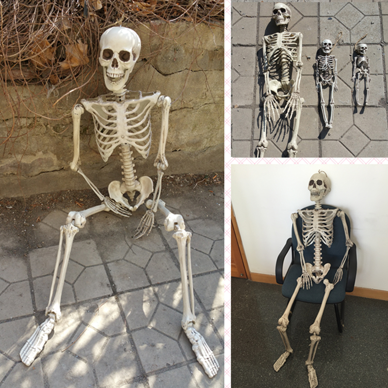 set of 4 human skeleton 165cm 90cm 40cm 30cm halloween skeleton 100 plastic skeleton for - Skeleton Halloween Decorations