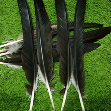 Buy eagle feathers and get free shipping on AliExpress com