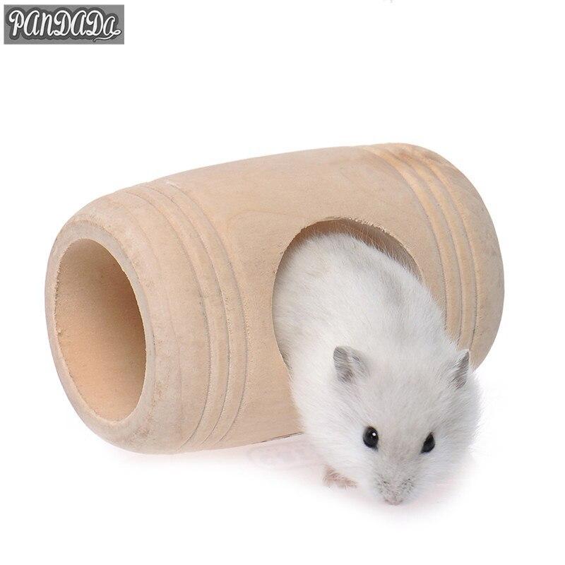 3 Rat Porn Tube