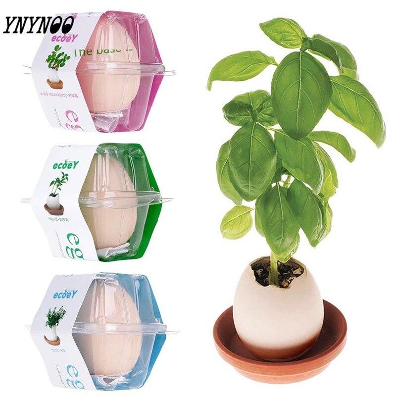 купить YNYNOO Action Figures Lucky Egg Shaped Ceramic Potted Plants Hatches Mini Plant Beautiful Flower Interest Plant Desktop Decor недорого