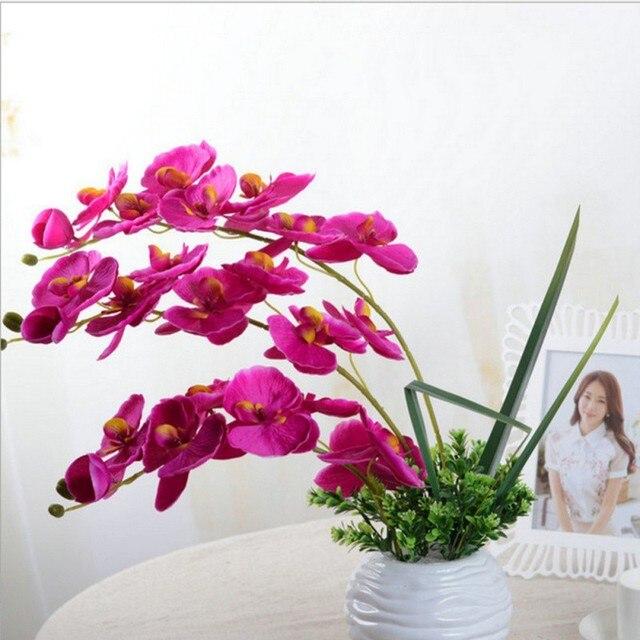 Бабочки купить искусственные цветы купить розы с эквадора