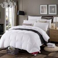 Silk Duvet Comforter Set Four Seasons Luxurious 200x230cm 220x240cm Beautiful Goodliness Comeliness Quilt Comfortable
