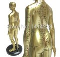 Free Shipping Meridian model human acupuncture point human body model 50cm Medical Education Appliances male