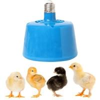 דוד חוות חיות מחמד בעלי חיים אור חם בעלי החיים סיניים חזירונים תרנגולות הנורה מנורת לשמור על התחממות חמה חום 220 V 100-300 W