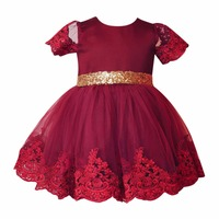 Baby Girls Tutu Dress Clothes Princess Flower Dress Lace Floral Bow Ball Gown Tutu Party Toddler
