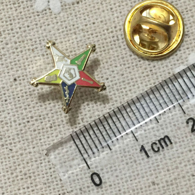 US $70 0 |100pcs Customized Masonic Lapel Pin Badges Freemasons Masonry  Brooches and Pins Order of the Eastern Star Patron Lapel Pin Craft-in Pins  &