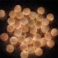 20 Fabric Creamy White Cotton Ball String Fairy Lights Luminaria Xmas Wedding Party Romantic Decoration Lamp Bulb