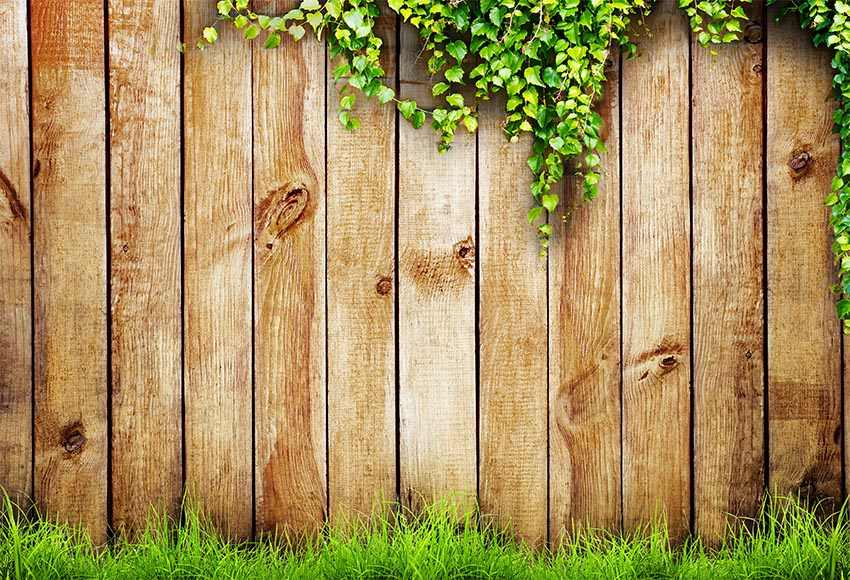 Vinyl Wood Wall Green Grass Backdrop For Photography Newborn Baby Photoshoot Props Kids Children Photo Background Aliexpress