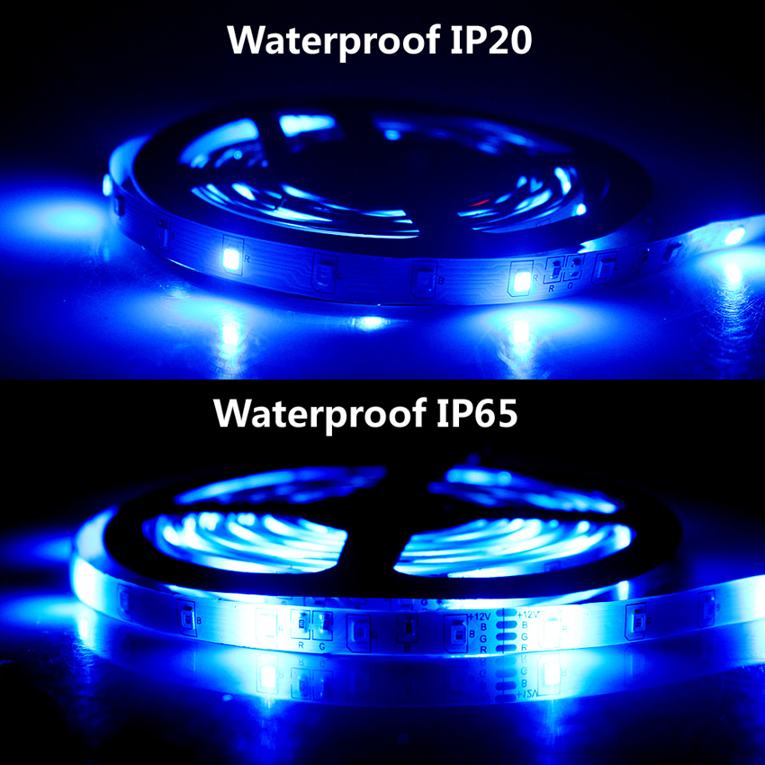 IP20-IP65-Blue