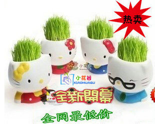Color KT cat flower pots doll grass planting potted office furniture life decorations nice small flower pots
