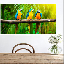 2019 Modern Australian Parrot Print Black Cockatoo Canvas Wall Art Bird Navy Blue Poster for Living Room Home Decor Framed(China)