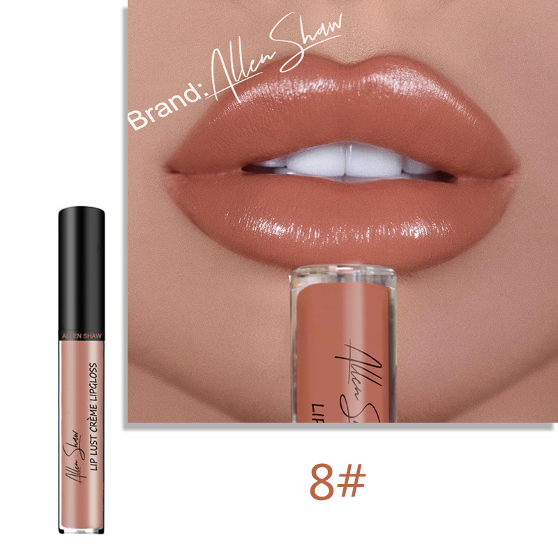 Lips Makeup Moisturizer Liquid Lipstick Long Lasting Smooth Creamy Easy to Wear Sexy Waterproof Pigments Lip Gloss Tint Cosmetic 4