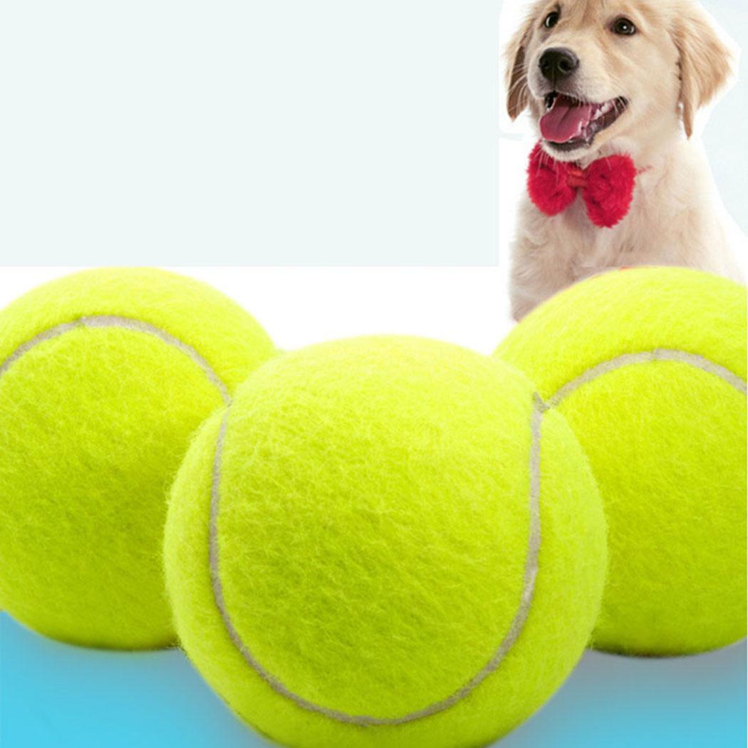 9.5inch Stretch Pet Sporting Goods Tennis 24cm Dog Outdoor, Tennis, Play Big Inflatable Tennis Ball
