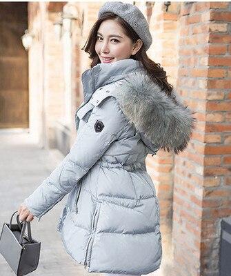 Online Shop 2016 Women Winter Duck Down Coat with Genuine Large ...