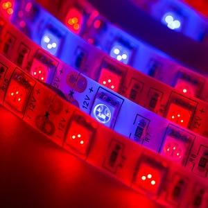 Image 5 - مصابيح فيتو LED بطول 5 متر شريط إضاءة LED كامل الطيف 300 مصباح LED 5050 رقاقة LED Fitolampy تنمو الاضواء للبيوت الزجاجية النباتات المائية