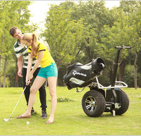 Body controlled Dual whe Electric Scooter Golf Scooter 1000w Motor Powerful Motor Electric Vehicle Powerful Golf Cart Scooter