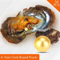 Wholesale Gold Pearls 30pcs Vacuum Packed Oysters With 6 7mm Round Akoya Pearls