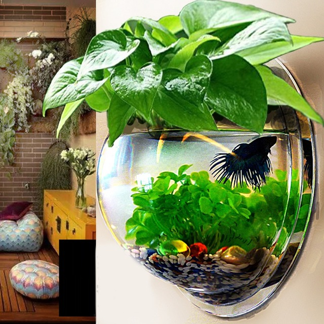 Decorative Fish Bowls Delectable Wall Mount Hanging Aquarium Bowl Decoration Fish Bowls Decorative