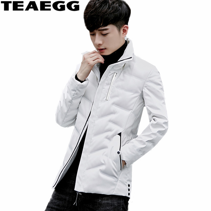 TEAEGG 2017 New Winter Down Jacket Men 90 White Duck Down Jackets Parka Stand Collar Man Jacket Coats Chaqueta Hombre AL518