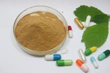 Высокое содержание расторопши, экстракт, порошок Силибин силимарин, силибинин Ремонт Здоровье Печени детоксикации печени таблетки 200 г бесплатная доставка