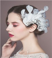 New-Arrival-Gorgeous-Feather-Hair-Clips-Crystal-Hair-Ornaments-Festival-Decoration-Gifts-Wedding-Photography-Bridal-Accessories
