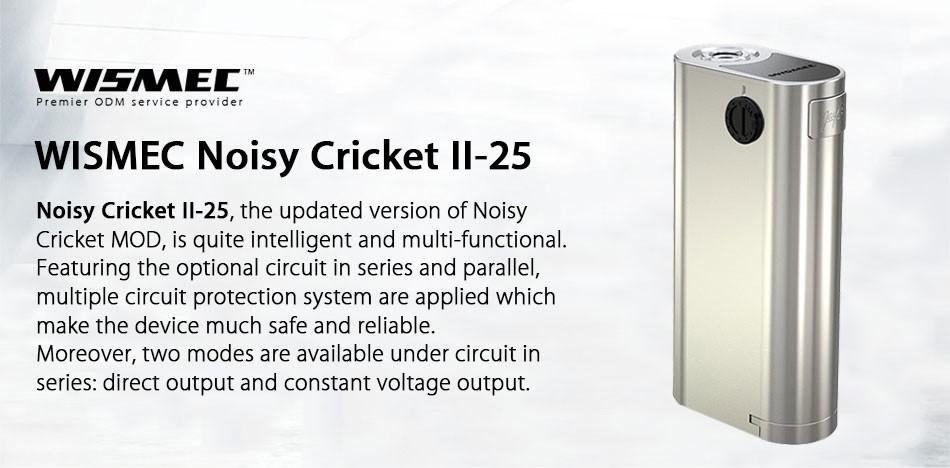 Noisy-Cricket- (1)
