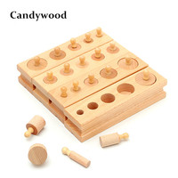 Montessori Materials toys Montessori Educational Cylinder Socket Blocks Toy Baby Development Practice and Senses education