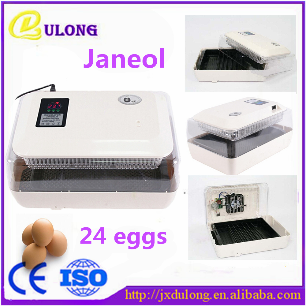 Cheap Mini Chicken Egg Incubator Brand Automatic 24 Eggs Transparent Incubator High Hatching Rate high quality holding 60 chicken eggs manual jn2 60 mini egg incubator high hatching rate