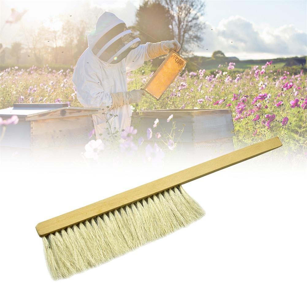 Beekeeping Tools Wood Wasp Sweep Brush Two Rows Of Horse Tail Hair New Bee Brush Beekeeping Equipment-in Beekeeping Tools from Home & Garden