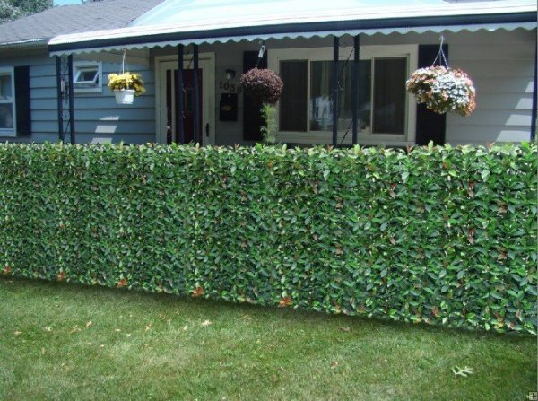 Fire Resistant Photinia Hedge Artificial Plastic Fence Fake Hedge Garden  Plants for Wedding and Party 50X50cm