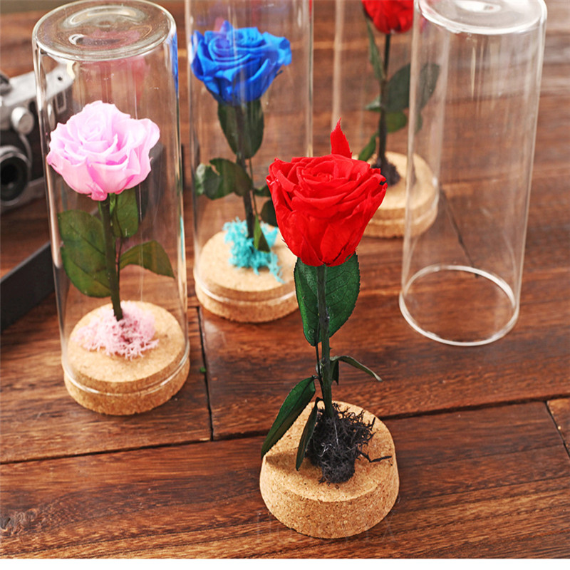 Mini Preserved Fresh Flower Live Forever Rose Enchanted Rose Natural Eternal Life Rose in Glass Dome Cover