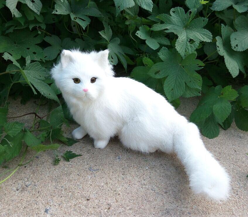 cute simulation cat lifelike handicraft white cat model gift about 26x28cm