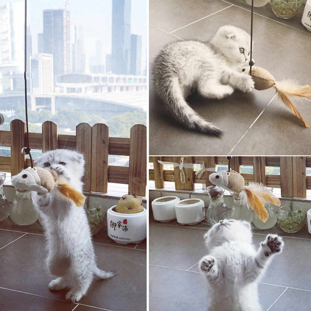 Bán Mèo Con Mèo Thú Chaser Dính Chuột Cá Bóng Chơi Tương Tác Đồ Chơi Thú Vị cho dropshipping