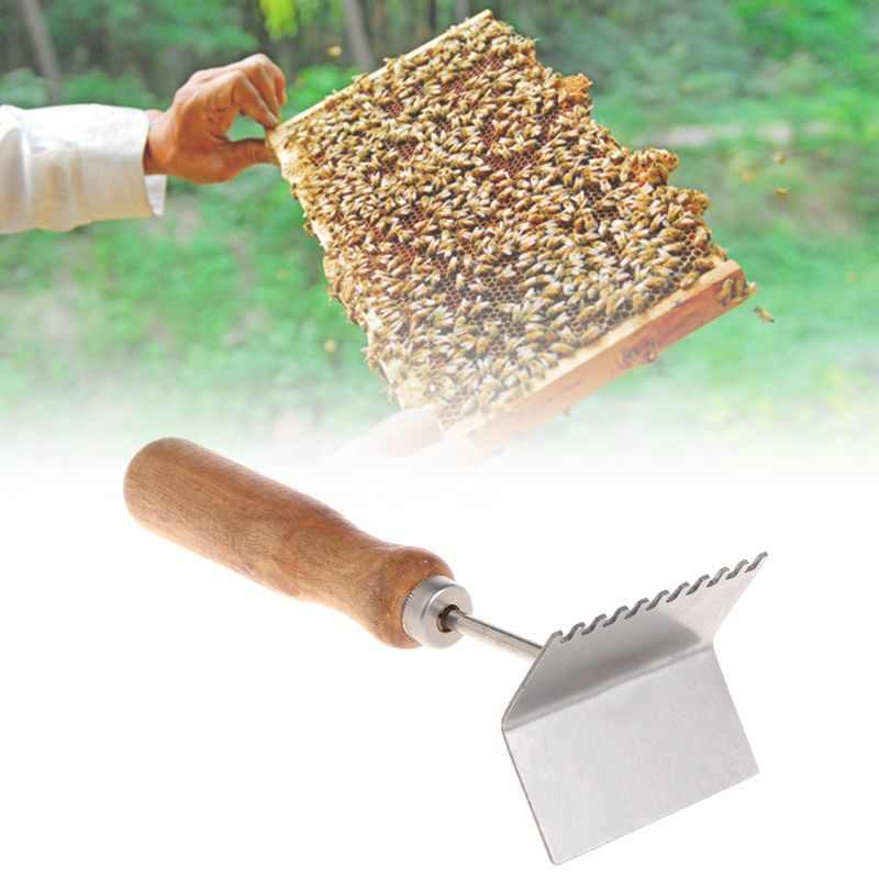 Bee Case Shovel Beekeeping Tools Cleaning Frame Cases Cleaner Scoop Beekeeper Equipment Beehive Wooden Handle Stainless Steel-in Beekeeping Tools from Home & Garden