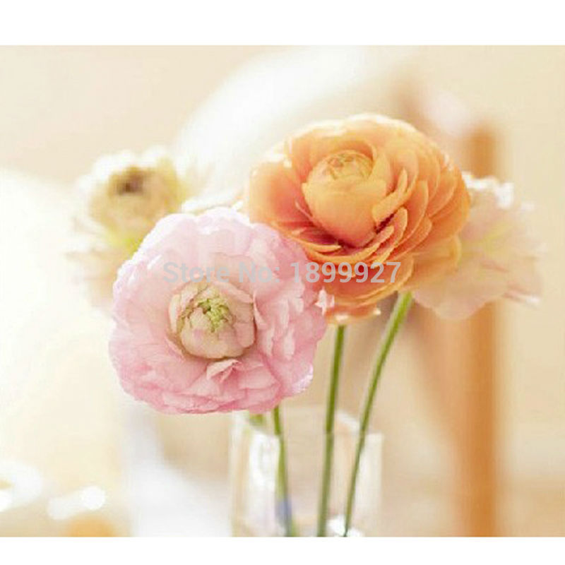 New Diy 5d Diamond Embroidery Flowers Pictures On The Wall  Diamond Painting Cross Stitch Kits Sets For Embroidery
