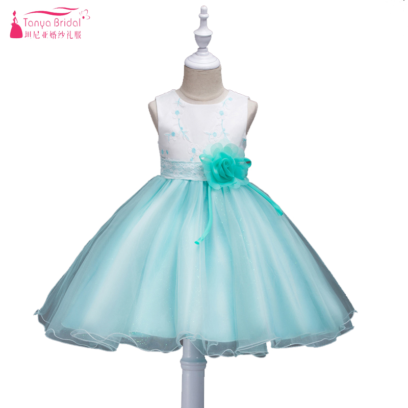 Mint Green Organza   Flower     Girls     Dress   For Wedding Party Gowns Embroidery   Flower   Decoration Children's Day Pagent Gowns ZF047