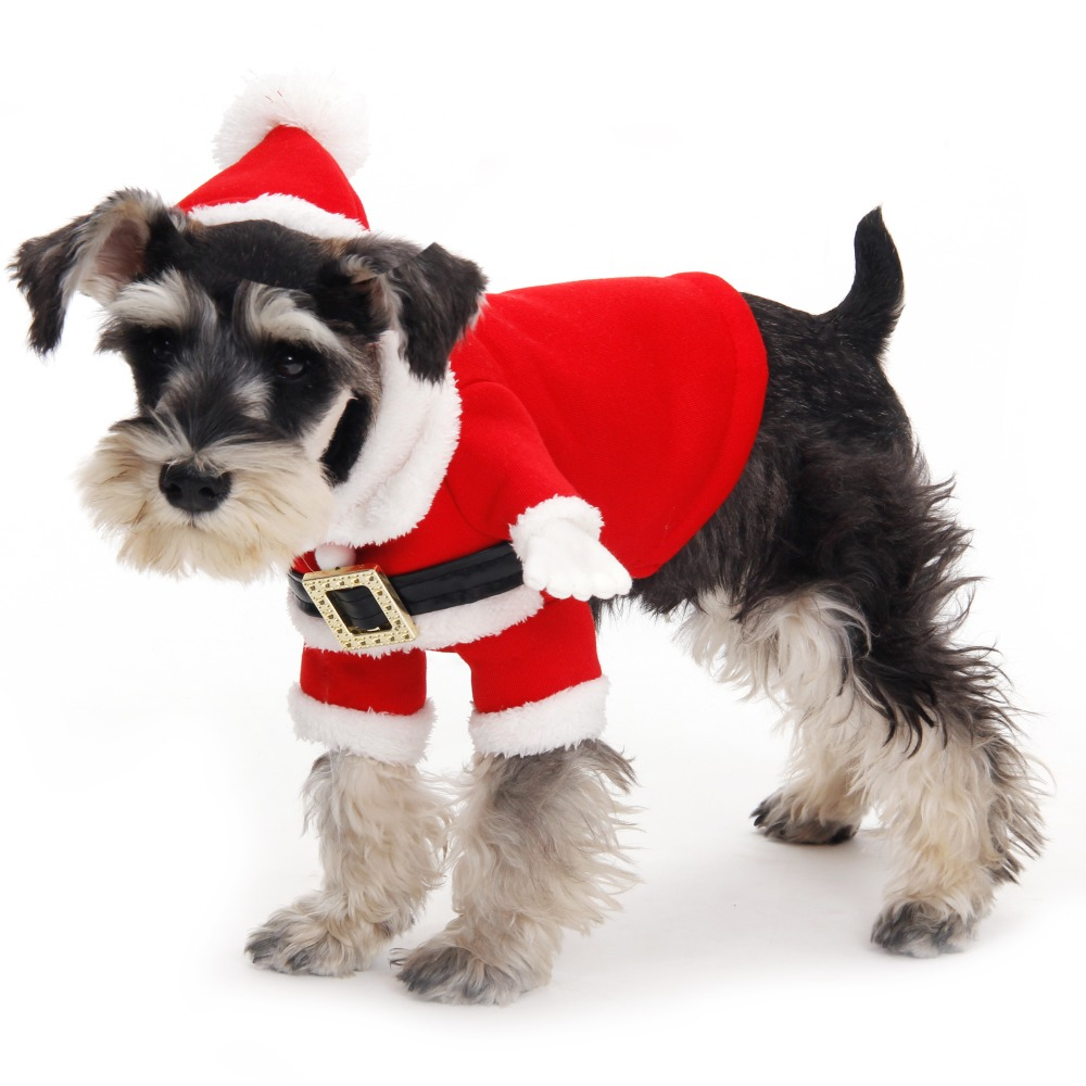 Aliexpress.com : Buy Free Shipping Pet Clothing Lovely ...