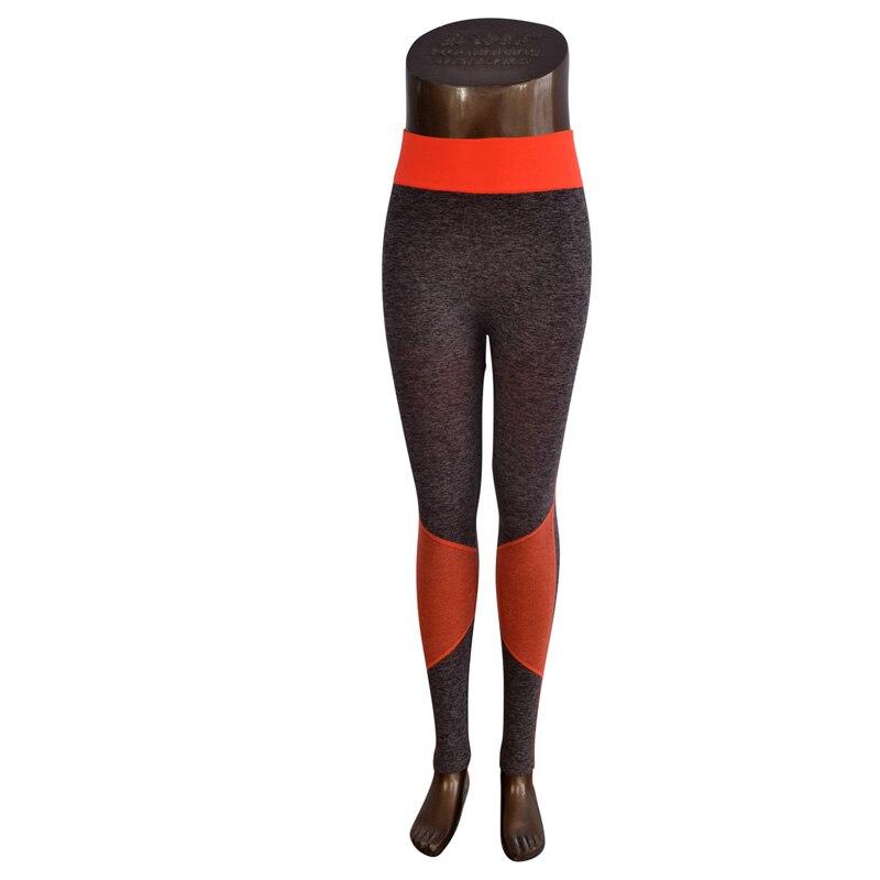 DISSIMILAR Frauen Fitness Ombre Hosen Activewear Abnehmen Nahtlose - Damenbekleidung - Foto 4