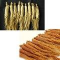 Beakdu корень женьшеня, Природный Panax производство северокорейский белый / красный корень женьшеня, Чанбайшань Panax