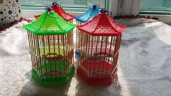 Միջատների մորեխ կերակրման վանդակի ծղրիդ Փոքր հասարակ տուփ շիշ տուն Երեխաներ Երեխաներ նվեր խաղալիք ուսումնասիրելու ունակություն զարգացում