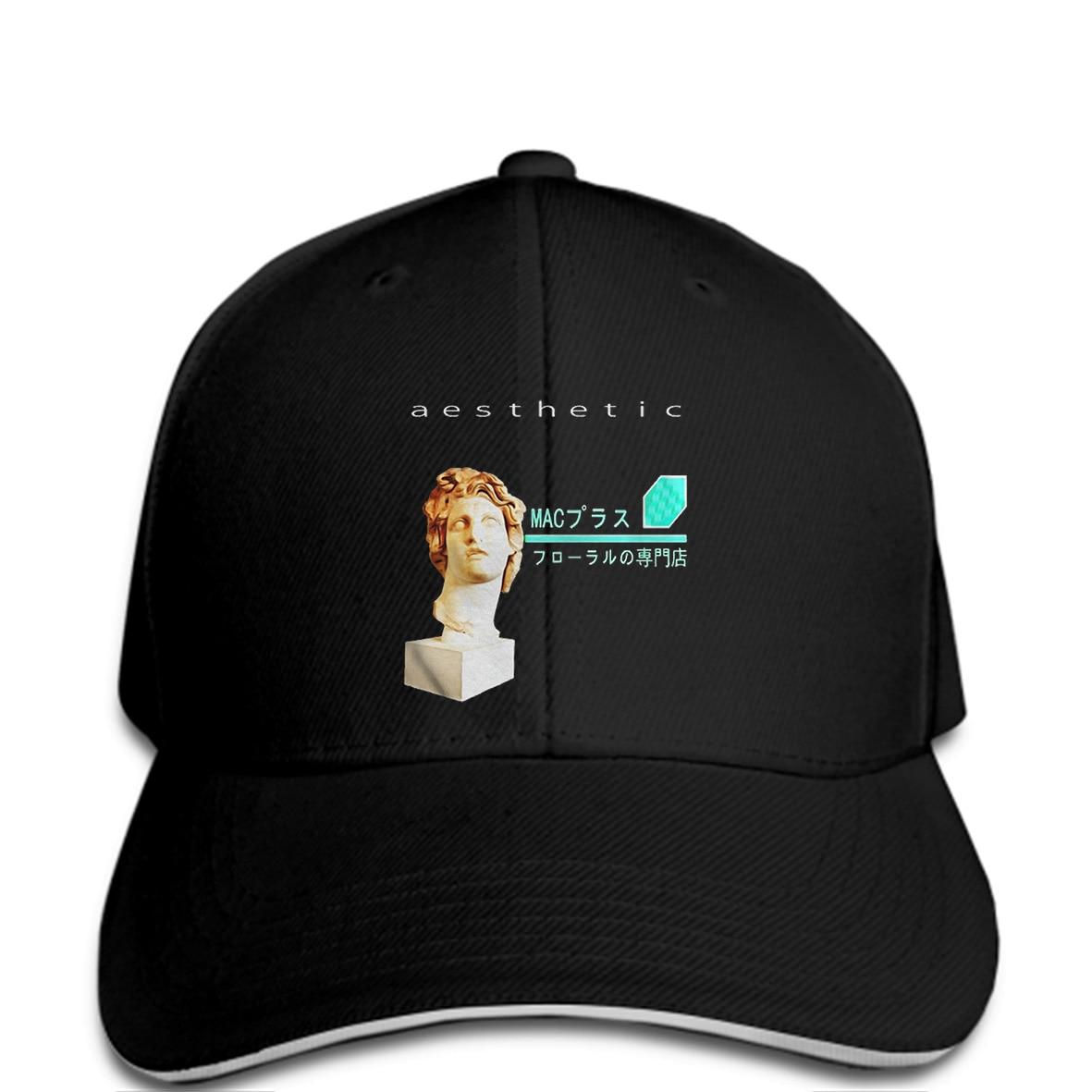 Dedicated Baseball Cap 2018 Fashion Men Hat Vaporwave Aesthetic Hat Meme Men's Baseball Caps
