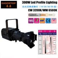 Бесплатная доставка Club КТВ Disco 300 Вт светодиодный сканер 300 Вт CW/WW Led следовать месте приспособление без мерцания для фильм/театр/аудио решени
