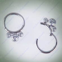 G23 Titanium Segment Nose Ring 16g Nipple Clicker Ear Cartilage Tragus Helix  Stud Lip Piercing Body Jewelry