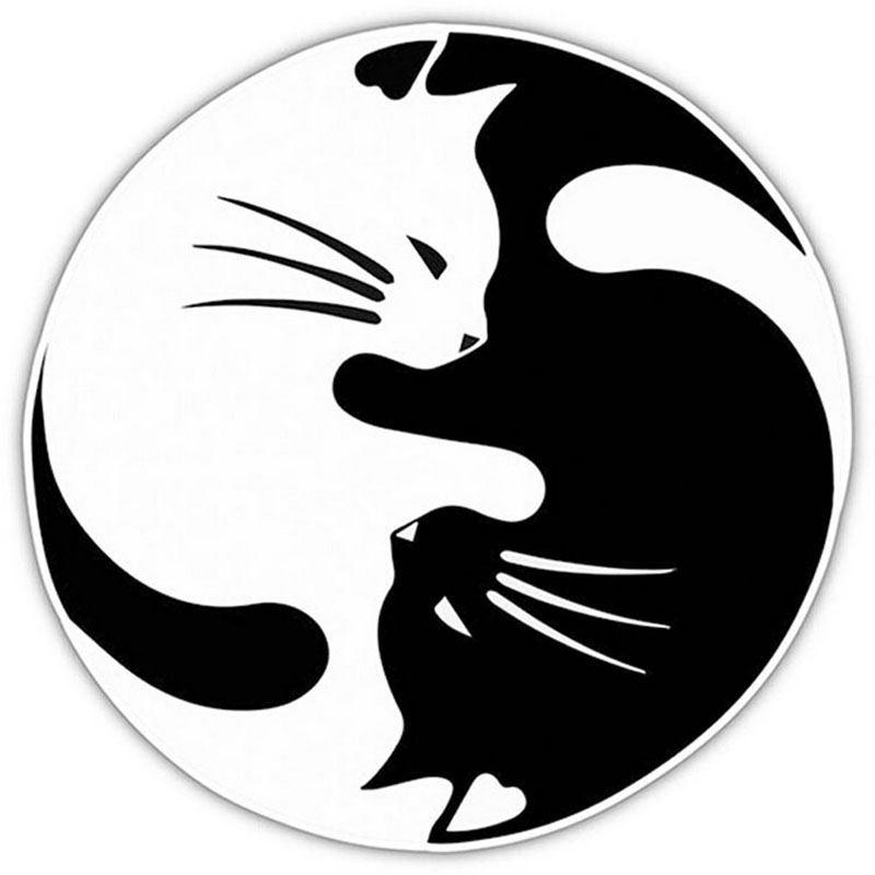 15*15CM Yin And Yang Cat Automobile Styling Decorative Decal Personalized Car Window Glass Sticker C6-0301