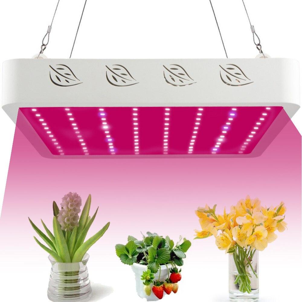 Professionnel LED grandir lumière spectre complet lampe de croissance pour les plantes hydroponiques d'intérieur moderne chemin pelouse lampe solaire décor