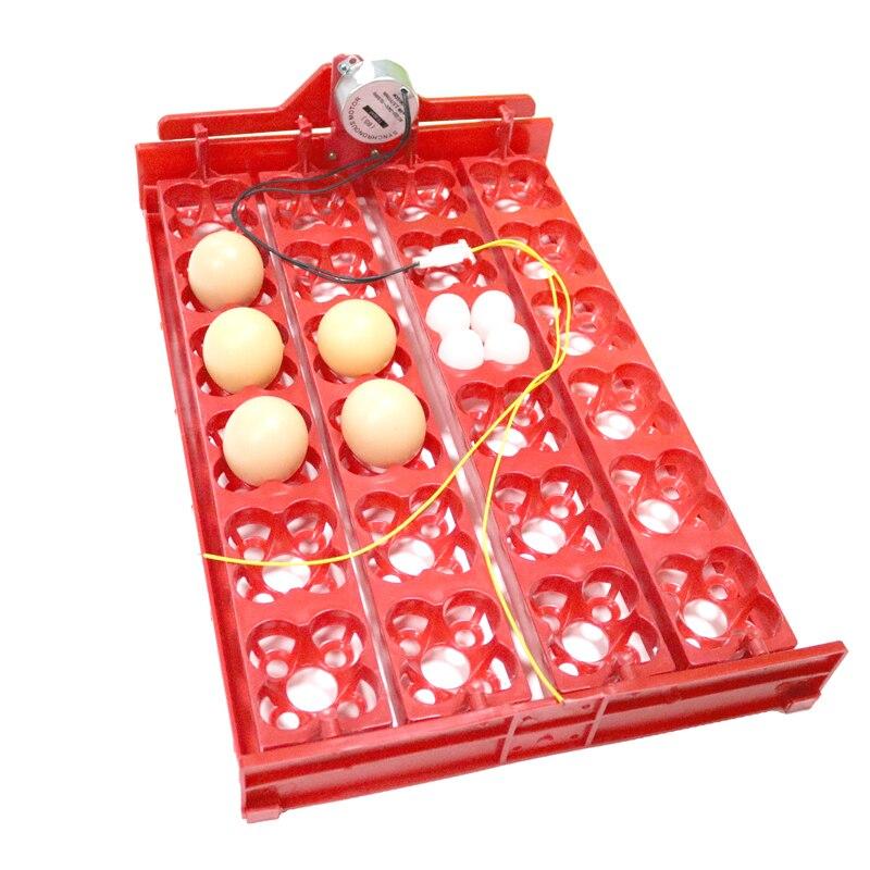 DIY 96 Eggs Vogel Inkubator Ei Rack-fach automatische 24 ei Inkubator Wachteln Papagei Inkubation Werkzeug Größe 43*28 cm
