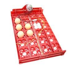 Incubadora para aves 96 huevos, bandeja automática de 24 huevos, herramienta de incubación de codornices de loros, tamaño 43*28 cm