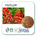 Best Quality 100% Natural Guarana Seed Extract 1000g/bag